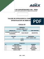 Monografia Final de Taller Palmito (1)