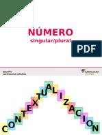 Número Singular-plural