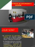 Comites de Seguridad 2013