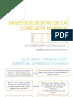basesbiolgicasdelaconductahumana-110224205919-phpapp02
