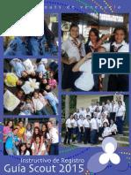 Instructivo RegistroGS 2015 AGSV