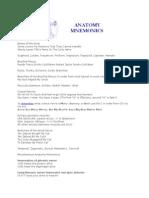Anatomy Mnemonics Usmle