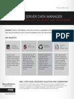 DocAve 6 SQL Server Data Manager