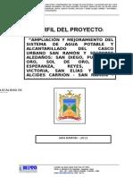 PERFIL SR SEGUNDA ETAPA r_WOS.fMODIFICADO.doc