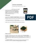 SUSTRATOS PARA CACTUS Y SUCULENTAS.doc