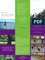 Intensive Pamphlet 2015