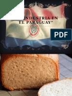 La Industria en El Paraguay