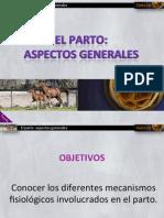 Tema 10 RFO. Parto- Aspectos Generales Moodle