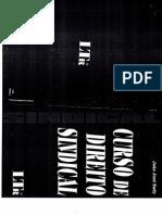 Curso de Direito Sindical João José Sady