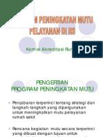 Program Mutu