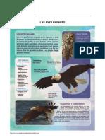evaluacion42.pdf