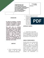 INFORME CRECIMIENTO BACTERIANO CON LECTURAS.docx