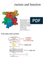 Protein Structure CBMol4 5
