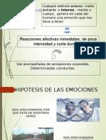 emociones y teorias