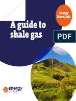 Sebastian Ramiro - Energy Essentials - Shale Gas Guide
