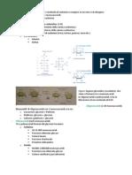 Carboidrati e proteine biochimica