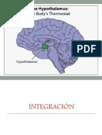 1. Sistema Nervioso