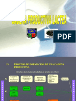 Cadena Productiva Lactea Esquema