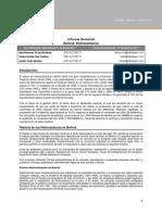 Sectorial Bolivia Hidrocarburos 201101 Alex