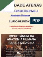 Conceitos Gerais Anatomia