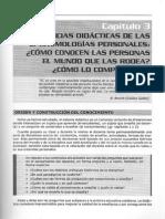 Capítulo 3 - Didáctica Práctica para enseñanza media y superior