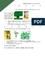 木を見る 絵本と写真史お話会の資料