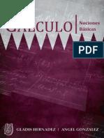 Nociones Basicas de Calculo