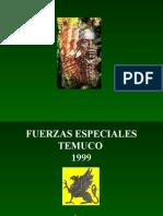 A Cade Mi Mapuche