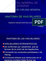 Anatomia de Viasbiliares
