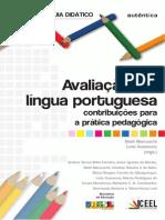 AVALIAÇÃO EM LINGUA PORTUGUESA
