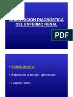 5-Diagnostico Del Enfermo Renal 2014