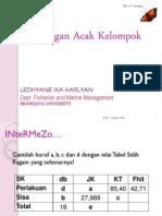 RAK.pdf