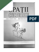 Spații culturale 39