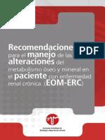 Guias oseo mineralERC(1) - Copiar.pdf