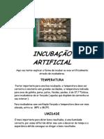 Incubacao Artificial