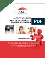 Estilos de de Aprendizaje y Los Procesos Metacognitivos