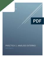 Práctica 1 análisis externo.pdf