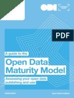 ODI Maturity Model