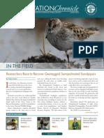 manometnewsletter_june2014.pdf