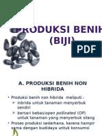 2.-PRODUKSI-BENIH-BIJI-NON-HIBRIDA.pptx