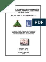 Estudio Prospeccion de La Cadena Ajo 1-2