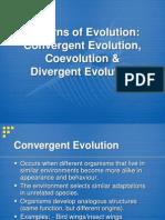 2  convergent vs  divergent evolution (2)