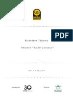 Relatório Técnico Ação Curvelo - Jan a mar 2014