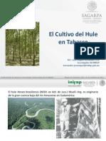 El_Cultivo_de_Hule_Tabasco (1).pdf