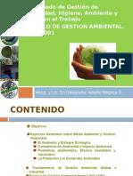 Gestion Ambiental y Ecologia