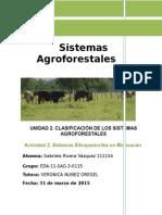 Ensayo sistemas agroforestales