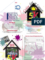 Color for a Cause Flyer Brochure 2015 (5)