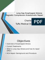 Long Gap Esophageal Atresia