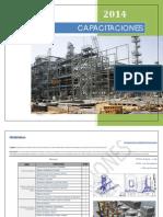 Programas de Capacitación (2014)