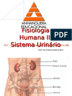 9 Fisiologia Renal